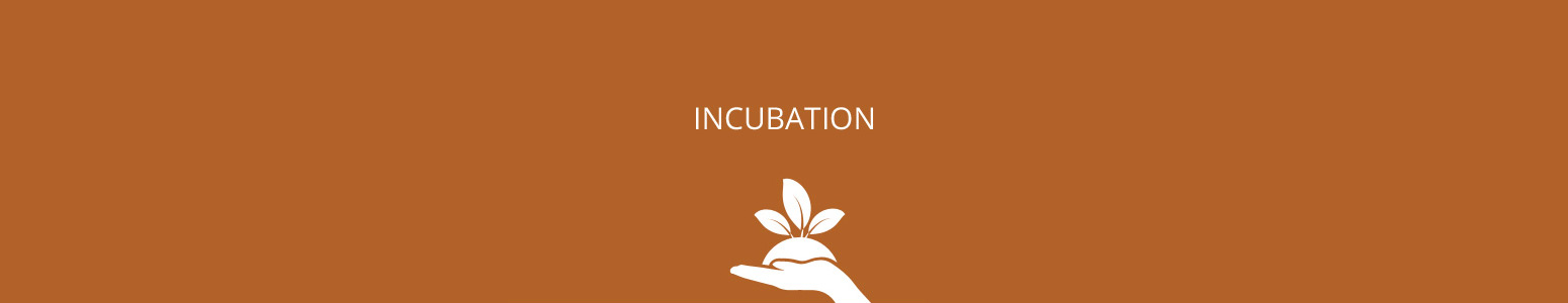 Image result for incubation